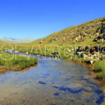 A fresh stream, Deosai National Park, Gilgit-Baltistan, July 21, 2014