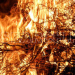 Bushes on Fire, Quetta, Balochistan, December 27, 2010